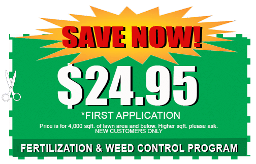 Lawn Care Fert and Weed Coupon