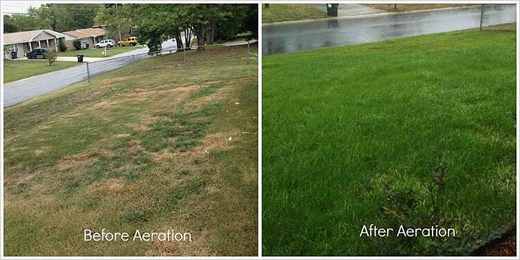 before-and-after-lawn-aeration-800x400
