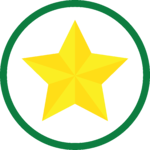 gold star icon green