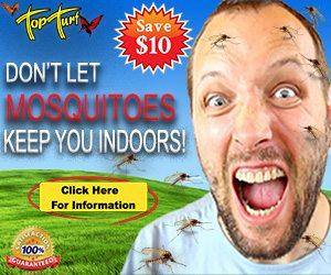 Mosquito Treatment Program