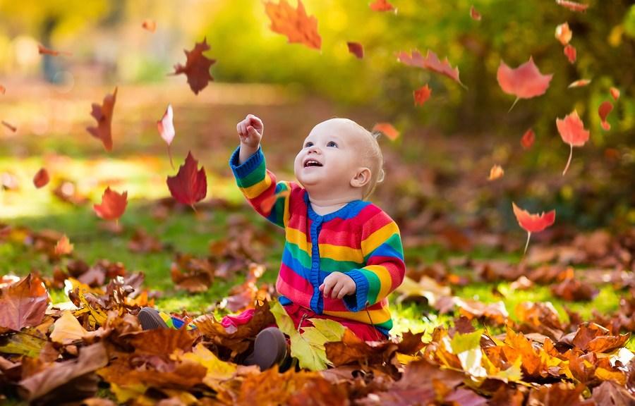 Do you really need to rake all those leaves?