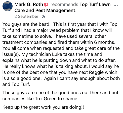 Review Mark G Roth