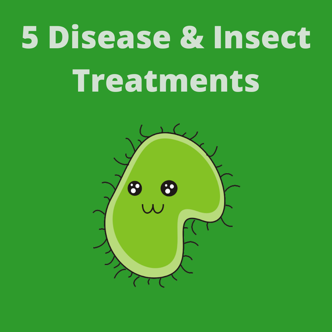 5 - DISEASE & INSECT TREATMENTS