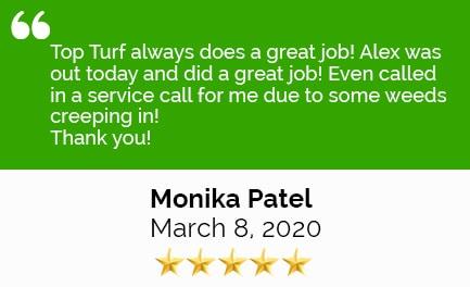 Review Patel