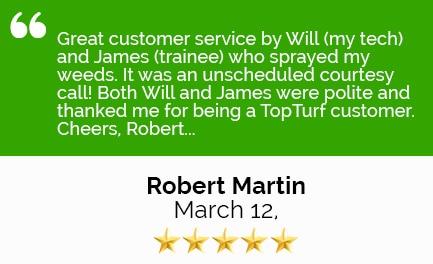 Review Robert