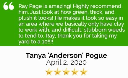 Review Tonya