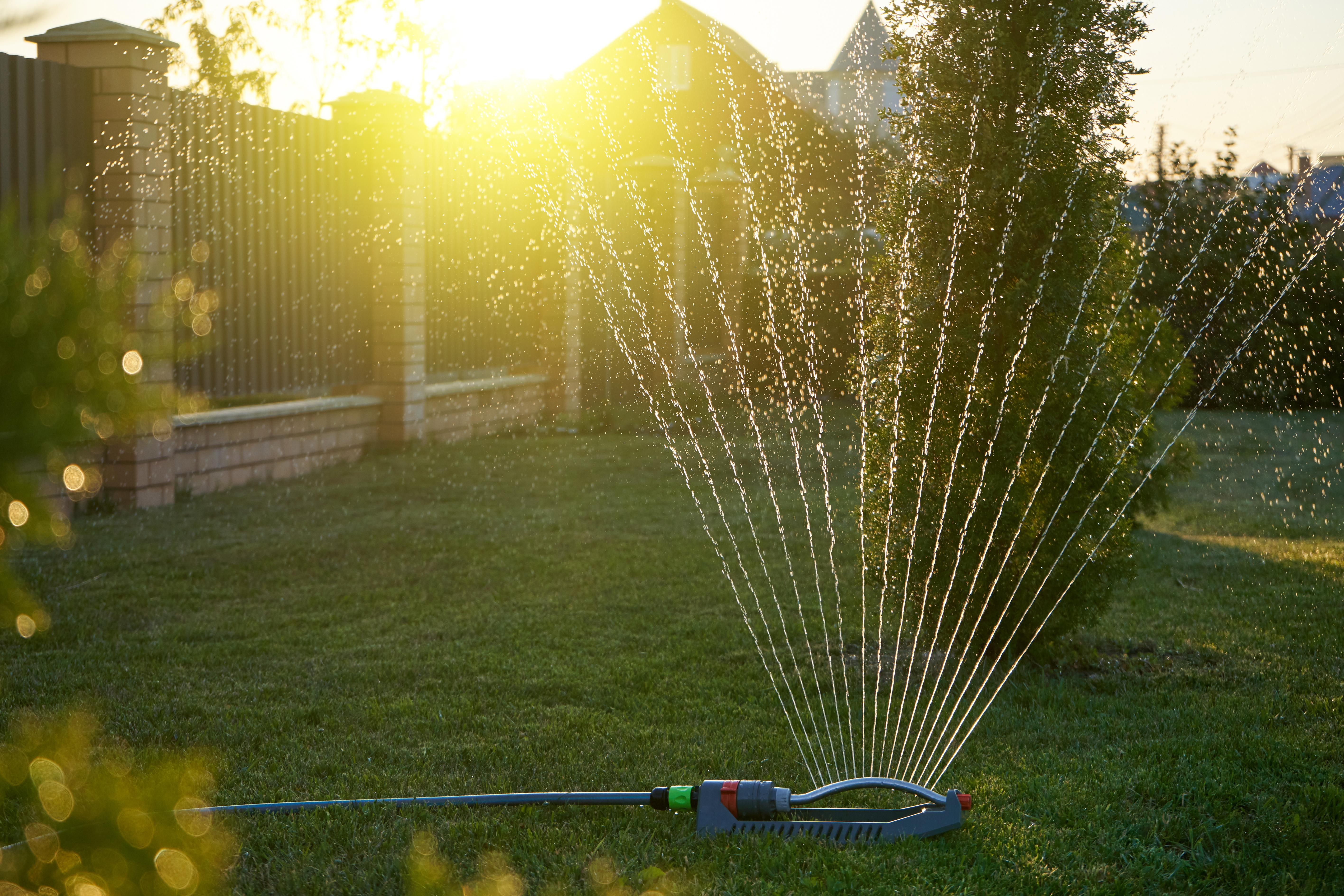 Don't Have In-Ground Irrigation?DIY Sprinkler System